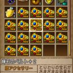 とりあえず王家の迷宮で輝石60個使ってみた